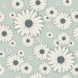 Seamless vintage pattern with daisies. Vector floral background Royalty Free Stock Photos