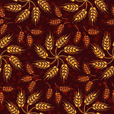 Seamless vintage pattern with flowers from yellow wheat. Brown a Royalty Free Stock Images