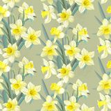 Seamless vintage pattern lush yellow daffodils Royalty Free Stock Image
