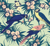 Seamless vintage pattern with macaws sitting on branches. Hand drawn vector. Royalty Free Stock Image