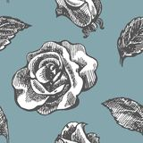Seamless vintage pattern with roses Royalty Free Stock Photo