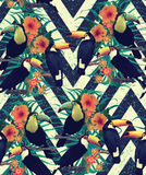 Seamless vintage style pattern with toucans. Hand Stock Photo