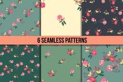 Seamless Vintage Wildflowers Pattern Set Stock Images
