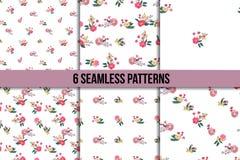 Seamless Vintage Wildflowers Pattern Set Royalty Free Stock Photo