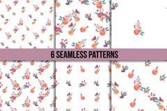 Seamless Vintage Wildflowers Pattern Set Stock Image