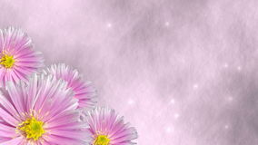 Seamless violet floral background loop with stars. 3D render stock footage