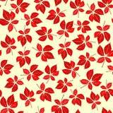 Seamless virginia creeper pattern Stock Photo
