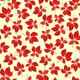 Seamless virginia creeper pattern. Vector background Stock Photo