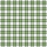 Seamless wall-paper plaid, green. Bright tartan texture. Seamless wall-paper plaid, green. Bright tartan texture for clothes, wall-paper, a background for cards Royalty Free Stock Photo