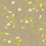 Seamless wallpaper. With tree branches Royalty Free Stock Images