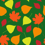 Seamless wallpaper  from autumn leaves Stock Images