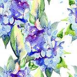 Seamless wallpaper with Beautiful blue flowers Royalty Free Stock Photography