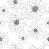 Seamless wallpaper with beautiful flowers Stock Image