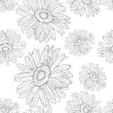 Seamless wallpaper with beautiful flowers Royalty Free Stock Photo