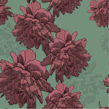 Seamless wallpaper with blooming peonies, hand-drawing. Vector i Stock Image