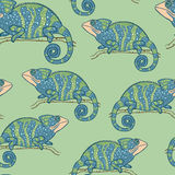 Seamless wallpaper with chameleon on green background Stock Photo