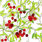 Seamless wallpaper with cherry. Universal template for greeting card, web page, background Royalty Free Stock Photos
