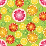 Seamless wallpaper with citrus fruits. Vector illustration Stock Image
