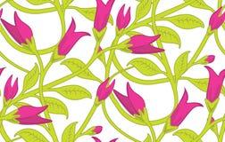 seamless wallpaper för blom- modell Arkivbild