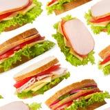 seamless wallpaper för skinksmörgåsar Royaltyfria Bilder