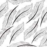 Seamless wallpaper feathers patern, texture, endless background, vector illustration Stock Photos