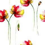 Seamless wallpaper with Gerber flowers Stock Photo