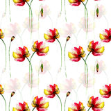 Seamless wallpaper with Gerber flowers. Watercolor illustration Stock Photos