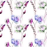 Seamless wallpaper with Gerber and Peony flowers. Watercolor illustration Royalty Free Stock Images