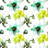Seamless wallpaper with Gerber, Poppy and Hydrangea flowers. Watercolor illustration Royalty Free Stock Images