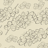 Seamless wallpaper with grapes Stock Image