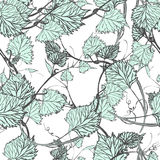 Seamless Wallpaper. Grapevine seamless pattern Stock Photography