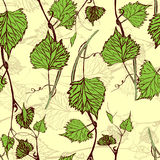 Seamless Wallpaper. Grapevine seamless pattern Royalty Free Stock Photos