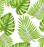 Seamless Wallpaper with Green Tropical Leaves for Fabric Swatch. Illustration Seamless Wallpaper with Green Tropical Leaves for Fabric Swatch, Summer Beautiful Royalty Free Stock Photos