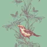 Seamless wallpaper with lilies and birds, hand-drawing. Vector i. Seamless wallpaper with lilies and birds, hand-drawing. Vector Stock Photography