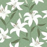 Seamless wallpaper with lily flowers Royalty Free Stock Photography