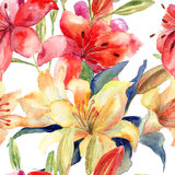 Seamless wallpaper with Lily flowers. Watercolor illustration Stock Photos