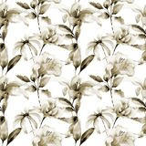 Seamless wallpaper with Lily flowers. Watercolor illustration Stock Photography