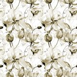 Seamless wallpaper with Lily and Tulips flowers. Watercolor illustration Stock Images