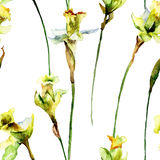 Seamless wallpaper with Narcissus flowers Royalty Free Stock Photo