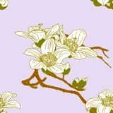 Seamless wallpaper with orchid flowers Royalty Free Stock Images