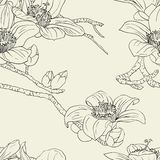 Seamless wallpaper with orchid flowers Stock Photo
