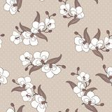 Seamless wallpaper with orchid flowers Stock Photography