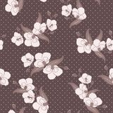 Seamless wallpaper with orchid flowers Stock Photos