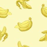 Seamless wallpaper pattern with bananas engraving drawing. Fruit Stock Image