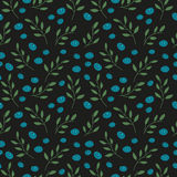 Seamless wallpaper with a pattern of berries and plants. Seamless background with blueberries on a black background Stock Photos