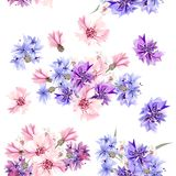 Seamless wallpaper pattern with blue, pink and purple cornflower Royalty Free Stock Image