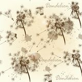 Seamless wallpaper pattern with dandelions Stock Photos