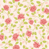 Seamless wallpaper pattern with roses Stock Photos