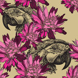 Seamless wallpaper with pink flowers and parrot, hand-drawing. V Royalty Free Stock Photo
