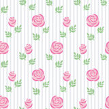 Seamless wallpaper pink roses with leaves on striped background. Stock Image